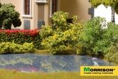 Желтый куст для макета, Morrison арт. 011-kr-003 (mm)